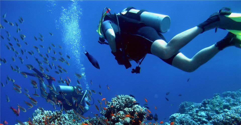 diving-immersioni-ogliastra-sardegna